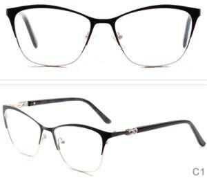 Online Nieuw ontwikkelt de Voorraad en de Klaar Frames Spestales Eyewear van de volledig-Rand van het Roestvrij staal van de Manier van het Oog van de Glazen van Goederen Optische met de Tempels van de Acetaat