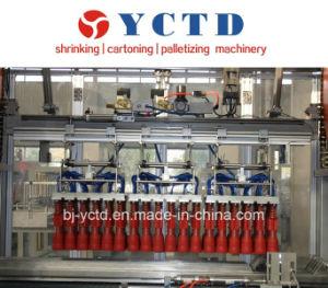 Agarra el tipo de máquinas de envasado (YCTD)