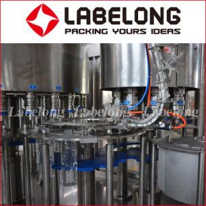 4000bph bouteille Pet Automatique Machine de remplissage de jus de fruits de la Chine de la fabrication