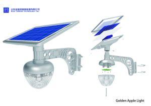 Nouveau design LED 7W Lumière solaire de jardin pour le marché de l'Inde