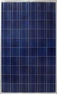 多結晶性ケイ素の太陽モジュール(SUN-60P)