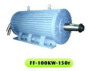 Pour générateur à aimant permanent (FF-100KW-150R PMG)