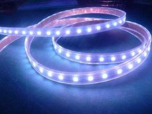 Luce di striscia del LED (YB-RD001003)