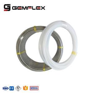 Tubo interno sporto del Teflon con filo di acciaio inossidabile intrecciato