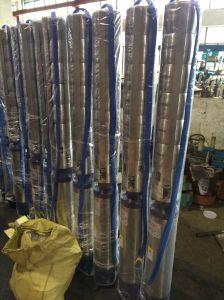pompa dell'acqua di pozzo profondo dell'acciaio inossidabile 6sp, pompa buona profonda