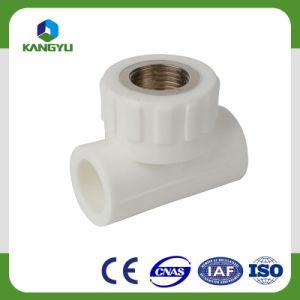 高品質の黄銅PPRの原料PPRの管付属品