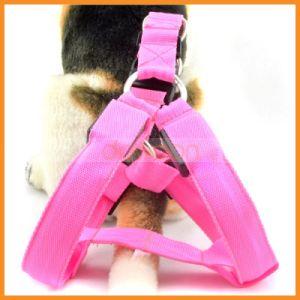 Luz LED de nilón personalizado de la correa del arnés de collar de perro de mascota