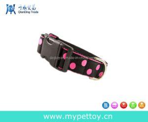 Collare di nylon del cane del PUNTINO degli animali domestici (QD-006)