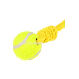 Corda con il giocattolo del cane della sfera di tennis
