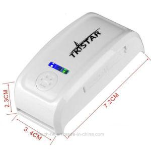 リアルタイムの位置の昇進のギフトペット追跡者GPS (TK909)