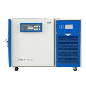 100L de rechte Ijskast van de Diepvriezer van de Lage Temperatuur van het Type met Uitstekende kwaliteit