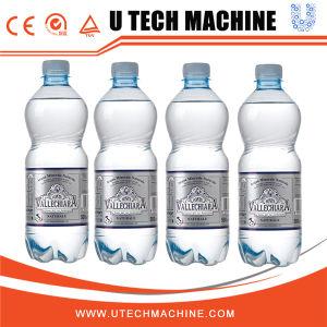 自動水飲料の満ちるびん詰めにするパッキング機械