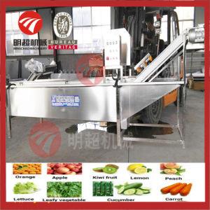 脂肪種子強姦の多機能の野菜フルーツ洗浄装置のクリーニング処理機械