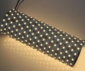 SMD 4 in 1 striscia RGBW 24V dell'indicatore luminoso LED del nastro di 5050 RGBW LED