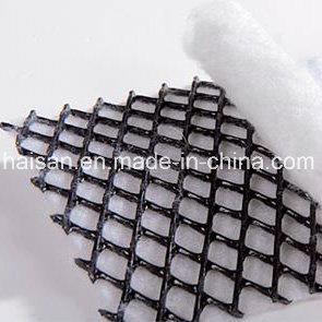 750g tri-Dimensionale Samengestelde Geonet van uitstekende kwaliteit voor Drainage