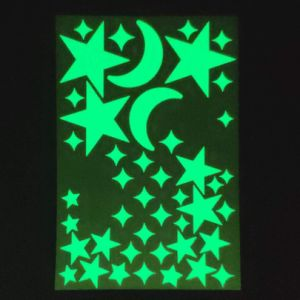 Luminiscentes ambiental///Noctilucent luminosa fotoluminiscente/Photoluminous/brilla en la oscuridad de pigmento en polvo para bisutería