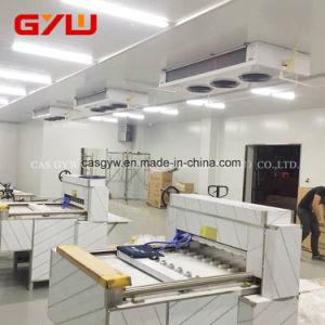 Ventilador da sala fria de armazenagem fria evaporadores e condensadores
