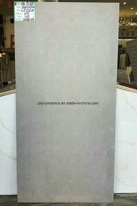 熱い建築材料の磁器の無作法な石造りのタイル