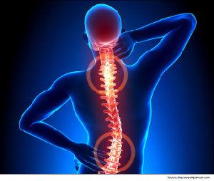 Магнитотерапия высшего качества акупунктуры массажер для тела