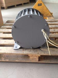 300 generatore elettrico della dinamo di watt 96V/120V pmg da vendere