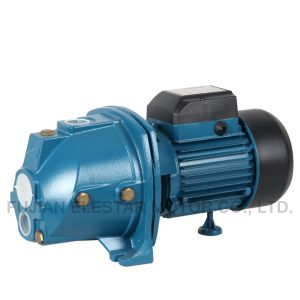 Conception Elestar chaud 220V 50Hz Jet Horizontal pompe centrifuge (JDW)