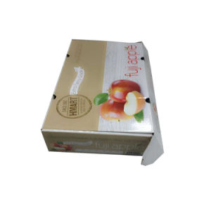 Caixa de acondicionamento de frutas frescas para Apple