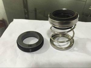Mechanische Dichtung, Flowserve PAC-Dichtung Typ 21, Spitzen-Pumpen-Dichtung