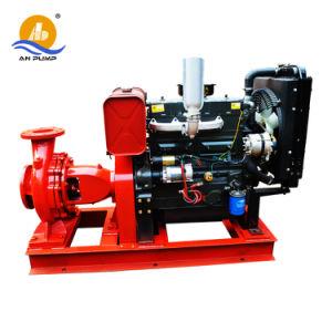Pompa ad acqua agricola centrifuga di irrigazione di aspirazione di conclusione