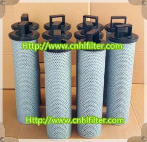Elemento alternativo 300790 del filtro dell'olio di Internormen