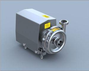 Bomba de Graxa de Aço Inoxidável/Bomba de Graxa Operada por Ar/Ar da Bomba de Graxa
