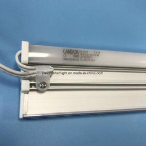 Mejor disipación del calor de estante de LED de luz con el precio de fábrica de etiquetas