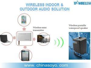 Wireless Bluetooth/2,4Ghz altifalante à prova de água para o ensino no exterior, piqueniques, dança, Praias