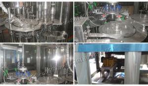 Anilha Xgf18-18-6, enchimento e máquina de desinfectante Capper monobloco