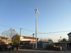 Het gehele Systeem van de Turbogenerator van de Wind van de Verkoop 3kw