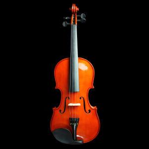Ель Solidwood популярных скрипка 1/8-4/4 (N-V02)
