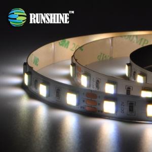 Striscia indirizzabile doppia di bianco il TDC LED con SMD 5050