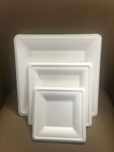 Des plats de la vaisselle biodégradable Bagasse plaque carrée de papier