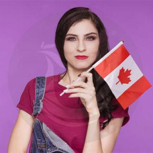 販売促進の安い各国用のカナダの熱い手持ち型のフラグ