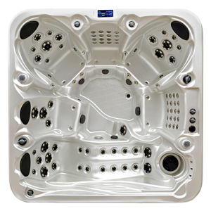 Hydro baignoire spa avec 6 sièges Massge SPA (S600)