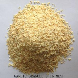 Um grau de alho desidratado grânulo