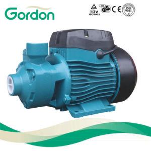 Inländischer elektrischer Messingantreiber-Zusatzwasser-Pumpe mit Stahlgußteil