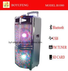 건전지 Bluetooth (B1080)를 가진 직업적인 휴대용 (트롤리) 스피커