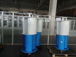 600W, 48V de Generator van de Wind van de Motor van Maglev