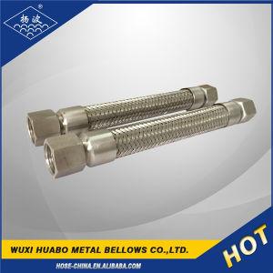 Giuntura del filetto del metallo flessibile dell'acciaio inossidabile/tubo flessibile dell'accoppiamento