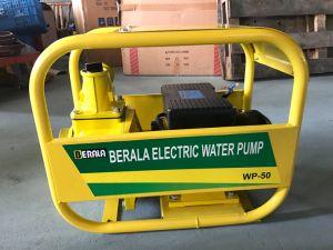 Nuevo modelo Wdsu-80 Bomba de agua eléctrica 3kw, para la Agricultura Riego