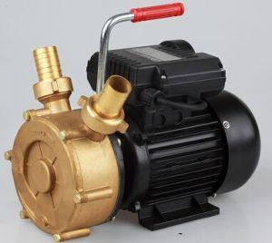 연료 펌프 기름 이동 펌프