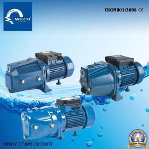 Pompe à eau électrique pompe à jet Self-Priming (JET100) 0,75 kw /1.0HP