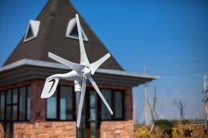 600W horizontaal wind-Zonne Hybride van-netSysteem