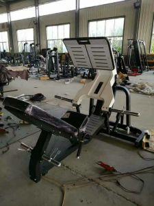 Macchina commerciale di forma fisica della fabbrica della Cina strumentazione di ginnastica della pressa del piedino da 45 gradi