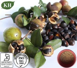 Natrual Camellia Oleifera Seed Extract saponines de thé 90% pour les soins du visage